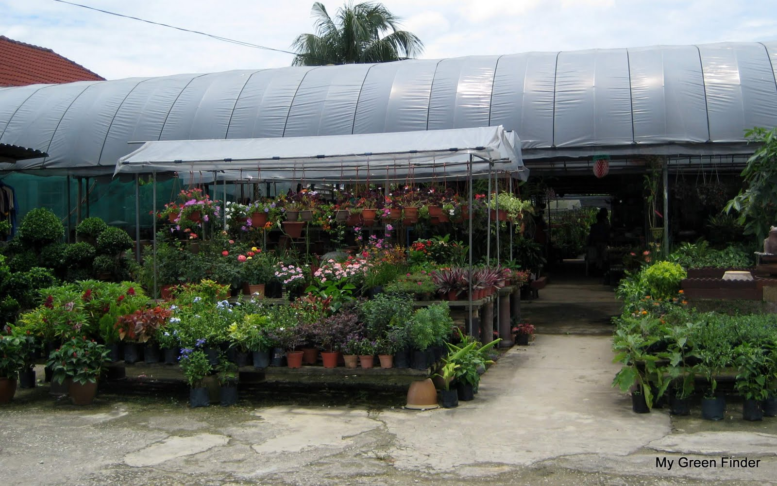 Law Nursery Landscaping Opens From 8 00am To 7 00pm Daily And Has Been In The Business For More Than 10 Years Besides Retailing Plants Operator Also