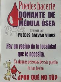 DONANTES DE MEDULA OSEA