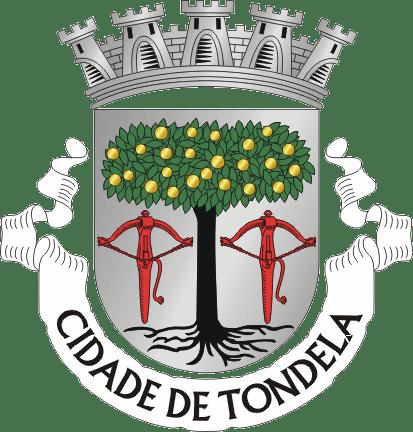 O MEU CONCELHO TONDELA