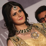 Zarine Khan Looks Gorgeous In Saree At The India International Jewellery Week (IIJW) 2012 Day 3