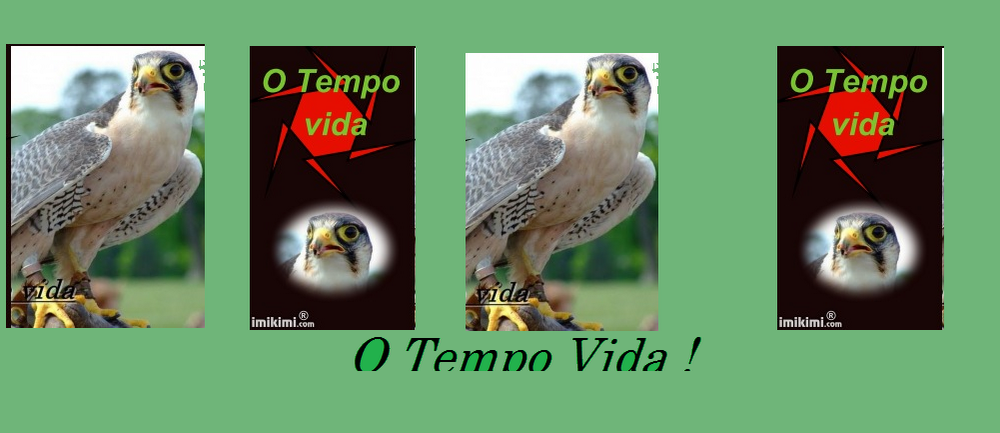 O TEMPO VIDA