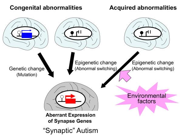 Epigenetics: Fundamentals
