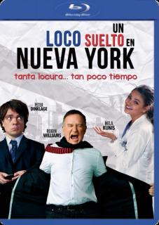 Un Loco Suelto En Nueva York (2014) Dvdrip Latino [Comedia]