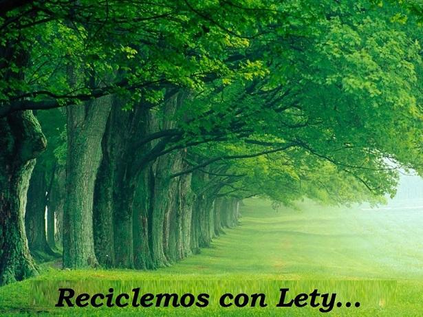 Reciclemos con Lety