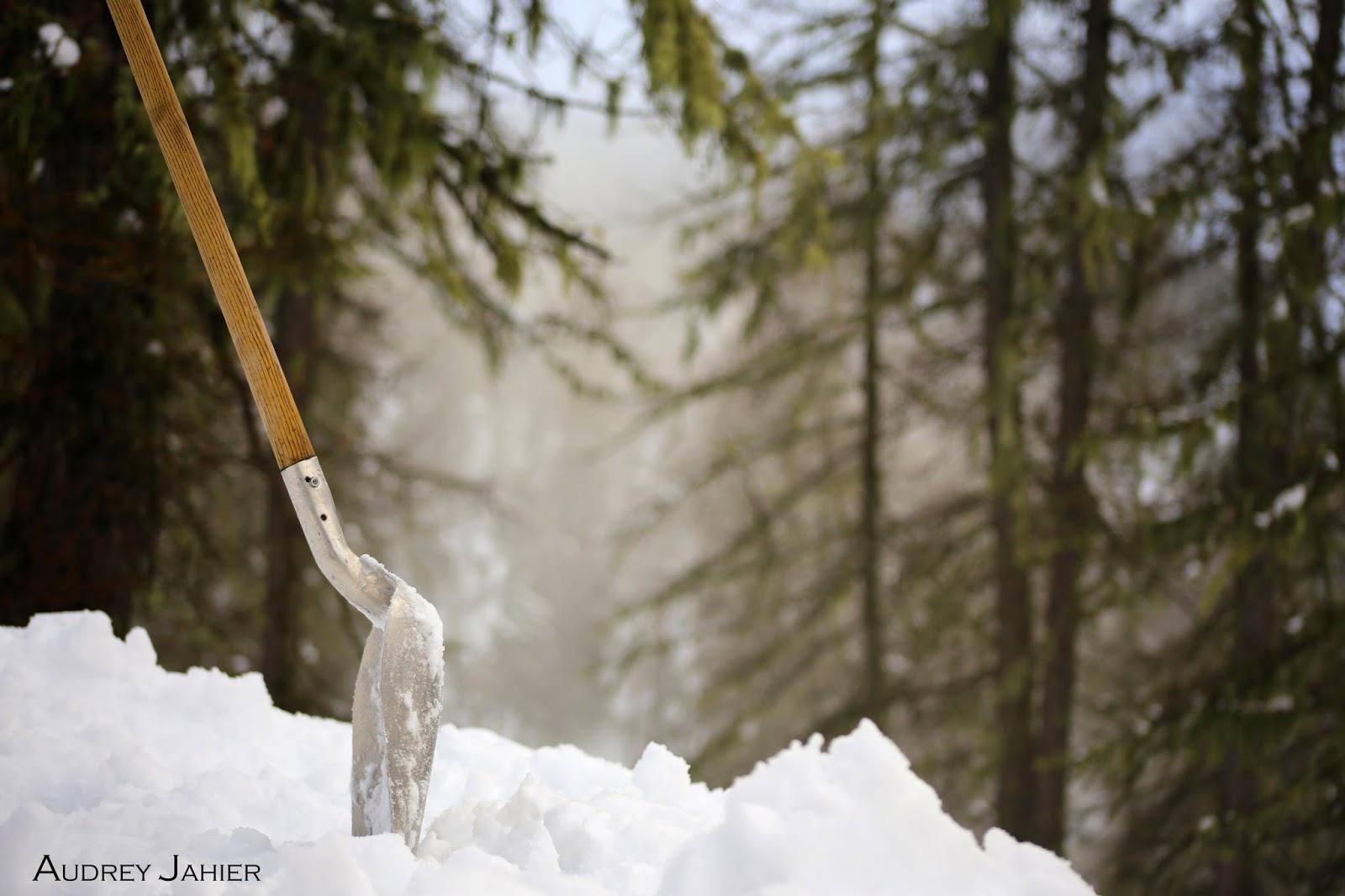 pelle plantée dans la neige- hiver-froid
