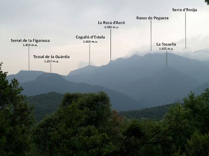 Vistes cap al Serrat de la Figarassa, el Cogulló d'Estela, la Roca d'Auró, els Rasos de Peguera... des del camí de Casadessús