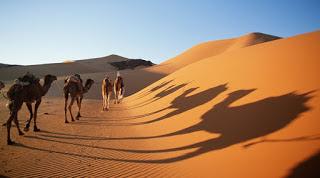 Ανακάλυψαν τεράστιο δίκτυο αρχαίων ποταμών κάτω από τη Σαχάρα.