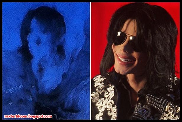 Telah Dilelang Kotoran Burung Mirip Michael Jackson - raxterbloom.blogspot.com