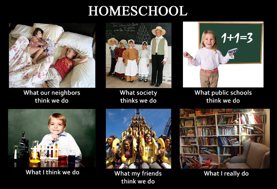 "against homeschooling Theharmsofhomeschooling robinlwest over the last thirty years, ""homeschooling."