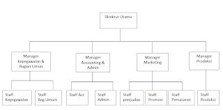 Contoh Bagan Struktur Organisasi