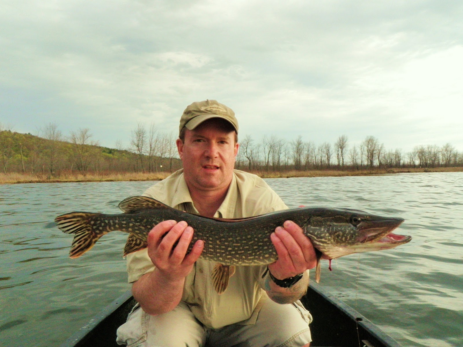 Drew price fly fishing pike pimpin 39 for Pike fly fishing