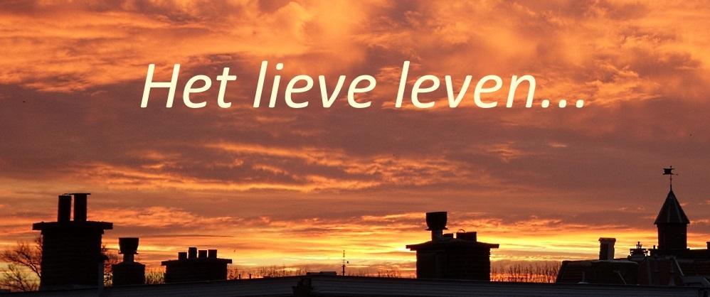 Het lieve leven...