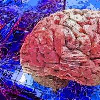 'neurocel (Carles Melis)'