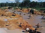 Estado do Amazonas libera uso de mercúrio em garimpos
