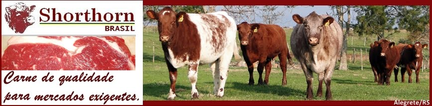 SHORTHORN BRASIL - shorthornbrasil@yahoo.com.br