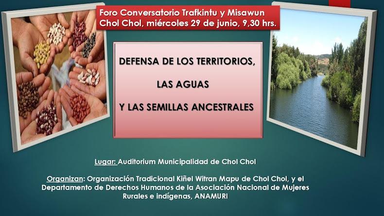 CHOL CHOL: FORO CONVERSATORIO, DEFENSA DE LOS TERRITORIOS, AGUAS Y LAS SEMILLAS ANCESTRALES