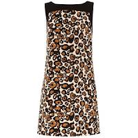 Oasis leopard print dress