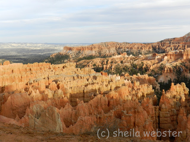 View of late sunshine on hoodoos
