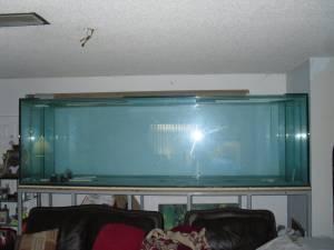 Giant Aquariums Brand New 673 Gallon Glass Aquarium