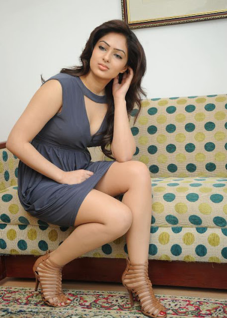 Nikesha Patel swmming pool hot photos