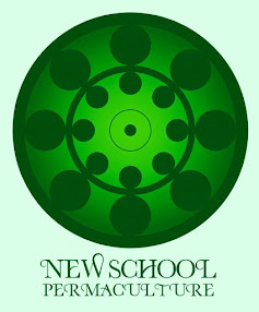 .What is the New School Permaculture?