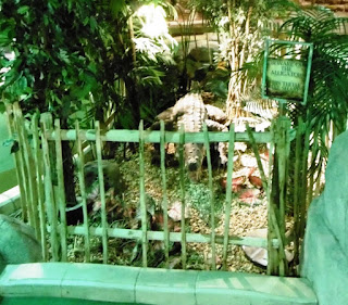 Photo of the amazing animatronic adventure golf alligator at The Lost City in Nottingham