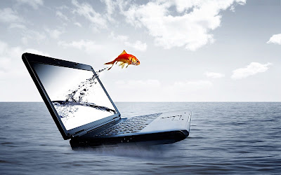 3D Notebook Fish Water HD Wallpaper   FreeHDWall