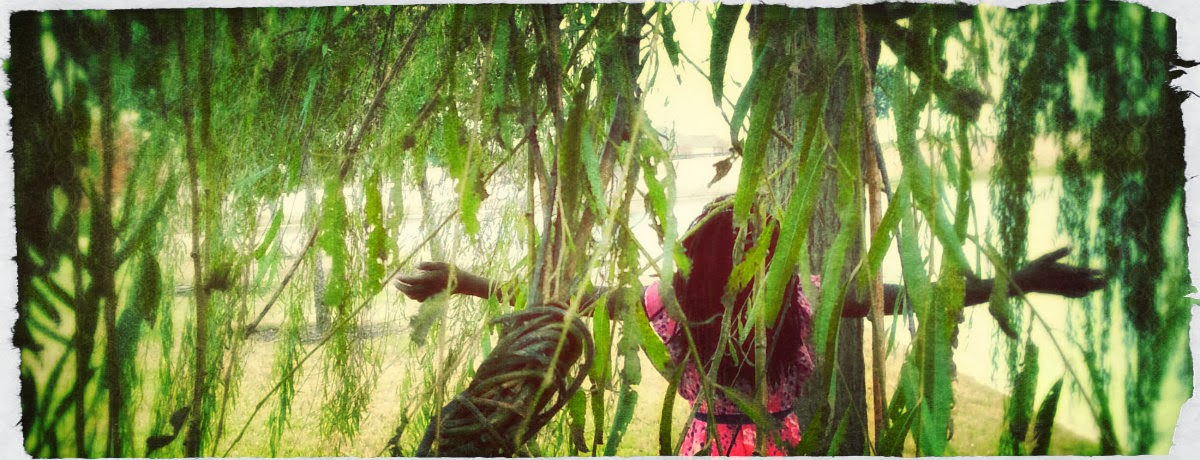 She and the Willow Tree
