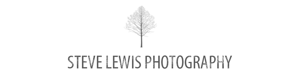 Scranton Wilkes-Barre  Wedding Photographer | Steve Lewis Photography
