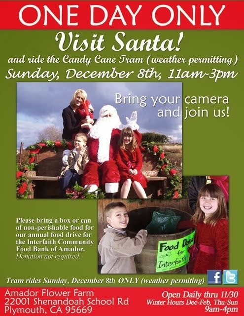Visit Santa at the Flower Farm - Dec 8