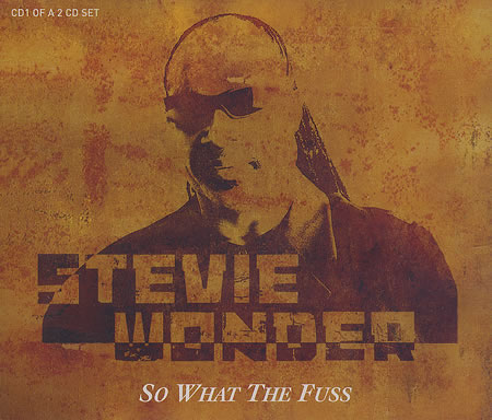 Stevie-Wonder-So-What-The-Fuss-383516.jpg