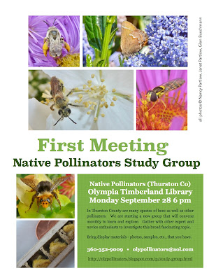 A poster: Study pollinators at Oly Public Library on 9/28/15