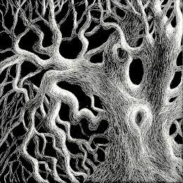 """""""Gnarled Oak"""""""