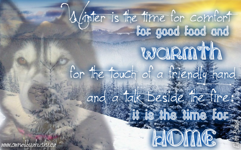 Image result for good night winter scenes