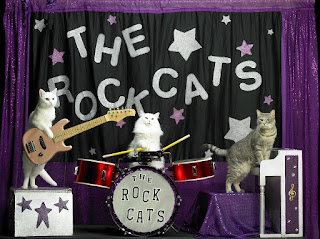 New-rockcats-cropped-1024x766