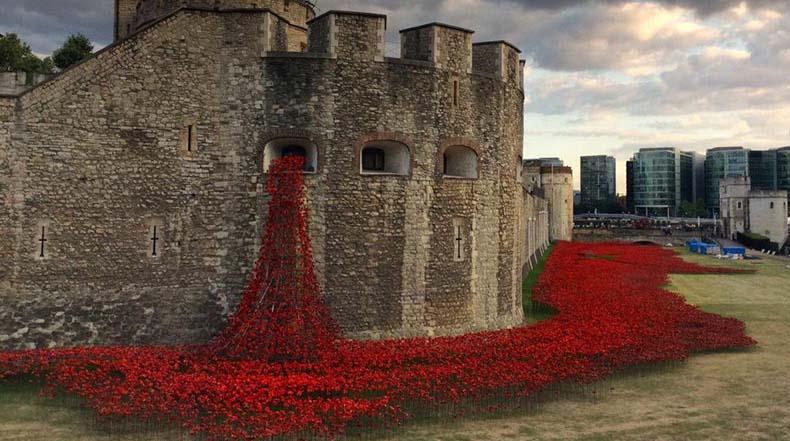 888246 Amapolas de cerámica rodean la Torre de Londres para conmemorar la Primera Guerra Mundial