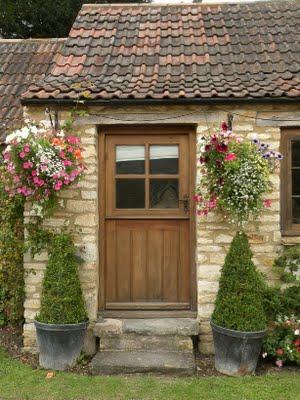 Il giardino sfumato fiori da appendere for Fiori da balcone perenni