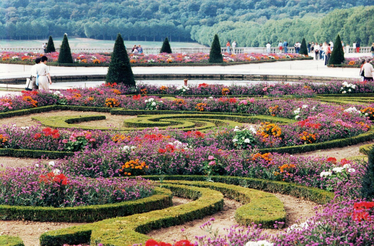 Flowers For Flower Lovers Flower Garden Wallpapers