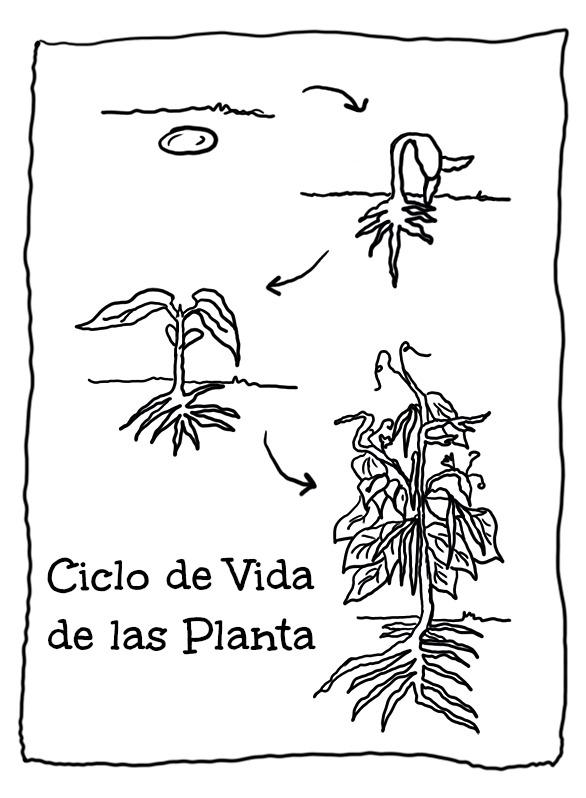 Menta Más Chocolate - RECURSOS PARA EDUCACIÓN INFANTIL: CICLO DE