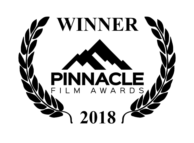 Dual Mania Wins Gold Award For Screenplay At Pinnacle Film Awards Event In Los Angeles