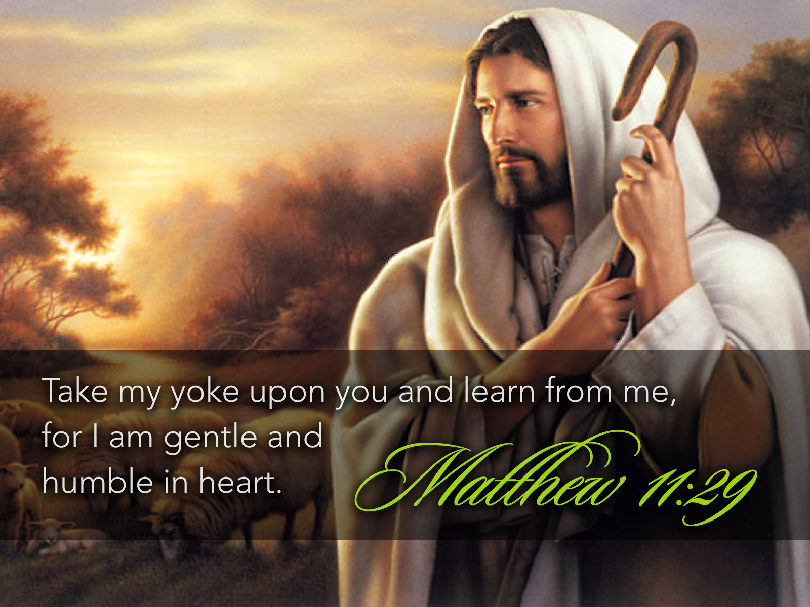 """""""Shoulder my yoke and learn from me"""" – catholic scripture ..."""