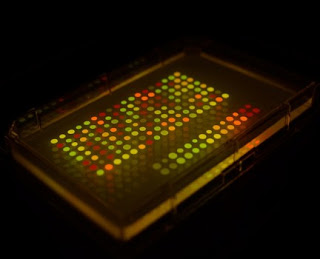 Bakteri Bercahaya Untuk Para Agen Rahasia [ www.BlogApaAja.com ]