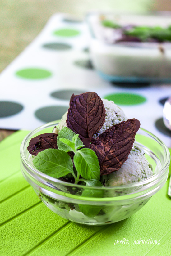 Fresh Mint Stracciatella Ice Cream with chocolate leaves | Svelte Salivations