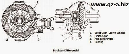 Struktur Differential