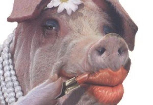 Lipstickpig.jpeg