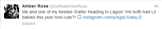 Beautiful Amber Rose on her way to Lagos(Photo)
