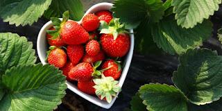 9 Makanan Yang Baik Untuk Kesehatan Jantung
