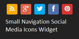 Small Navigation Social Icons Widget
