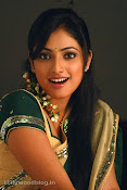 Hari Priya in Half Saree Photo Stills in Pilla Zamindar-thumbnail-14