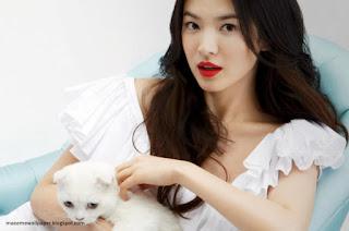 Song Hye Kyo cat by macemewallpaper.blogspot.com